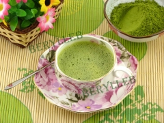 Organic Grade 1 Matcha Green Tea Powder * Free Shipping